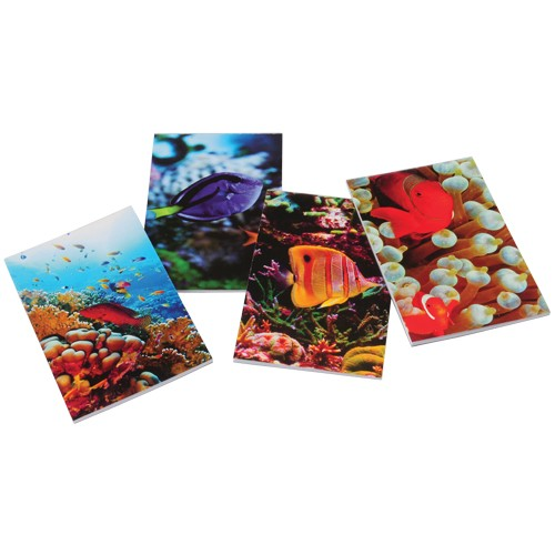 Coral Reef Notepads - 12 Pack