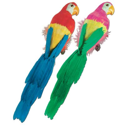Feathered Parrot 20""