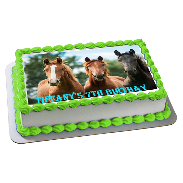 Horse Birthday Party Supplies Canada - Open A Party
