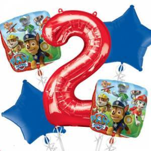 Paw Patrol Amp Paw Patrol Pink Birthday Party Supplies