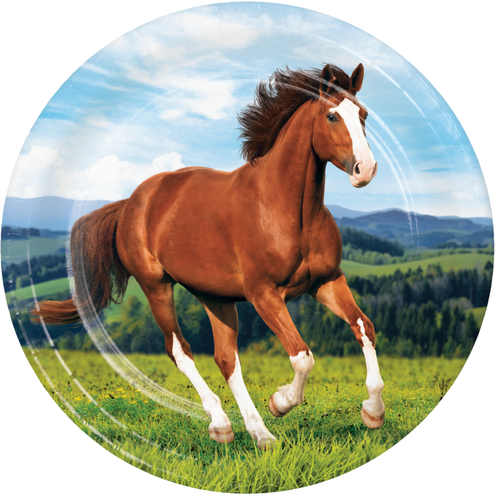 50 OFF Horse And Pony Dinner Plates