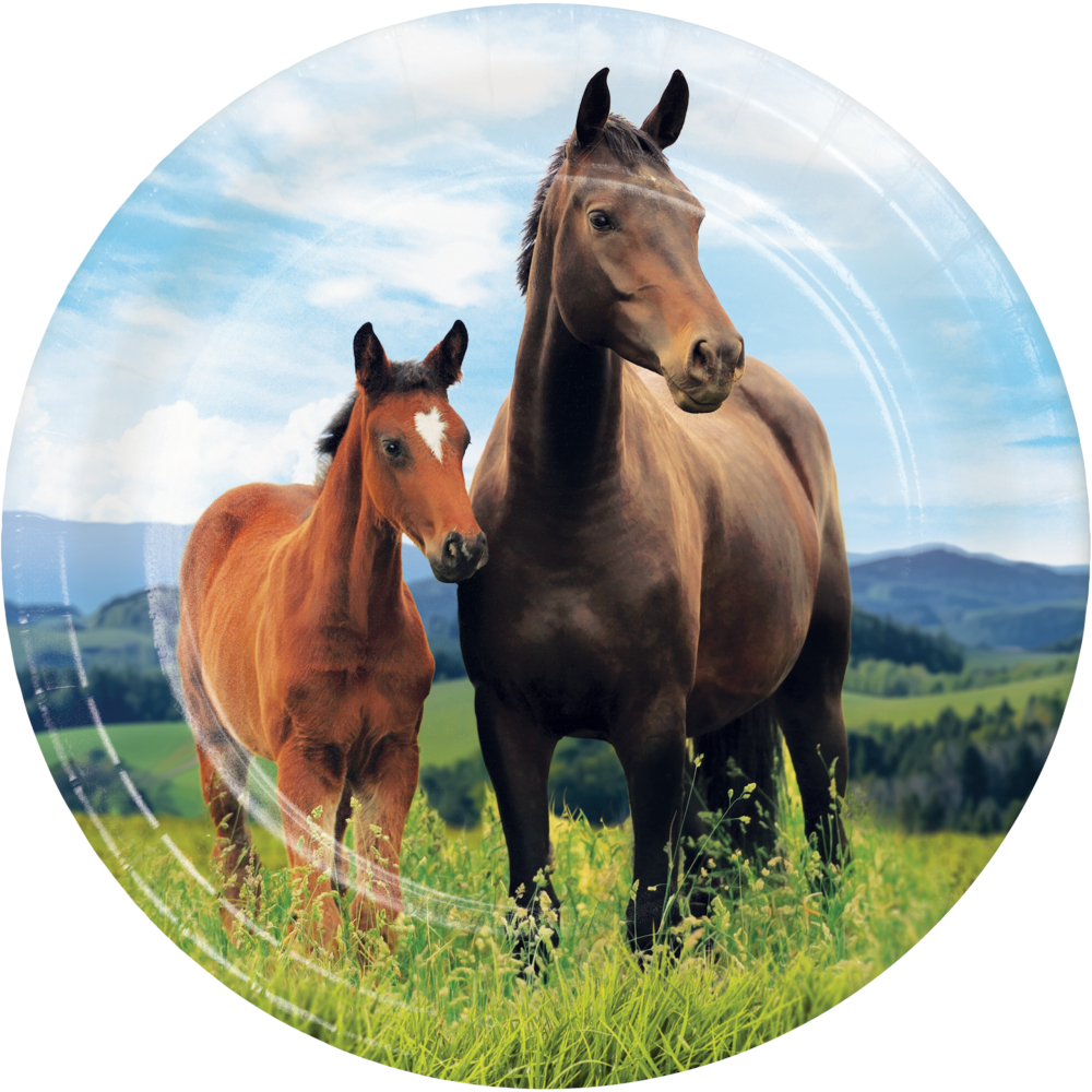 50 OFF Horse And Pony Dessert Plates