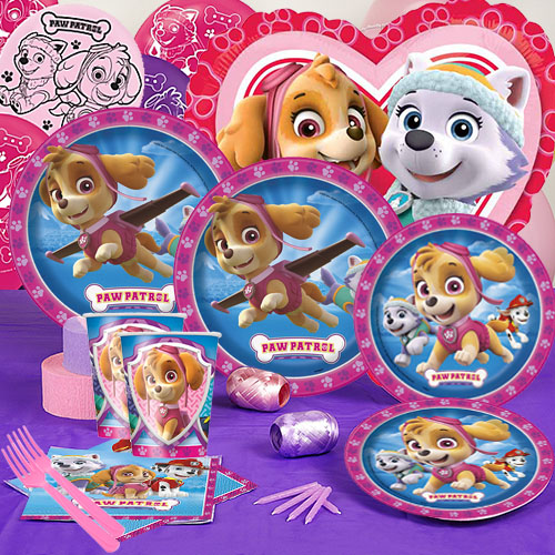 20 OFF Paw Patrol Pink Party Pack For 16