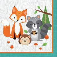 *Woodland 1st Birthday Party Supplies
