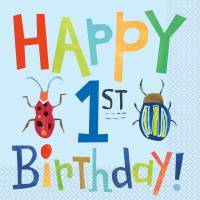 Ist Birthday Bug Party Supplies