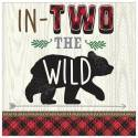 Two the Wild 2nd Birthday Party Supplies