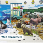 Wild Encounters VBS Supplies