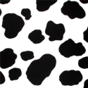 Cow Print Party Supplies