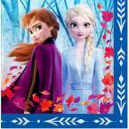 Frozen 2 Movie Birthday Party Supplies