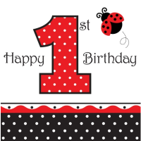LadyBug 1st Birthday Party Supplies